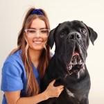 thumbnail image0 4 - Sophie Kennedy- Vet Nurse