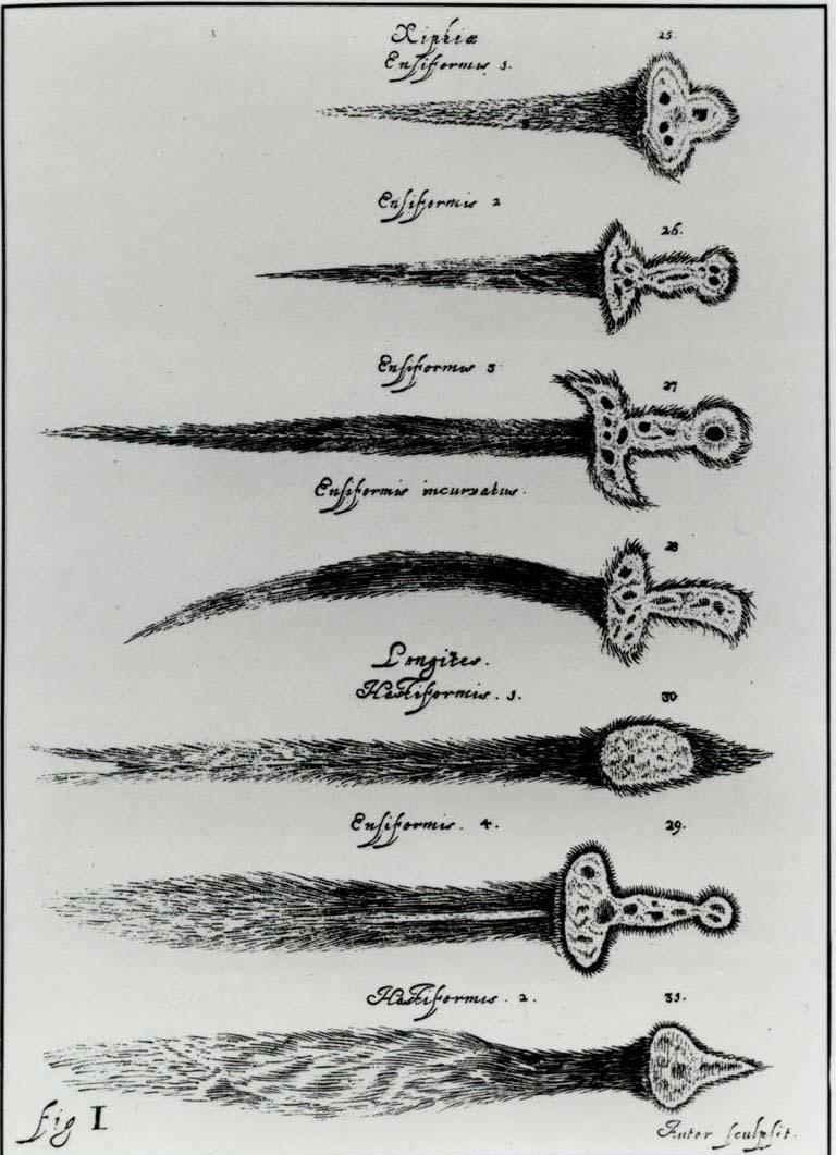 sword-of-heaven