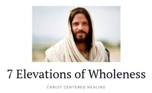7-elevations-of-wholeness