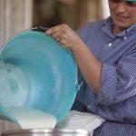 Latte di alta qualità per Parmigiano Reggiano di Montagna