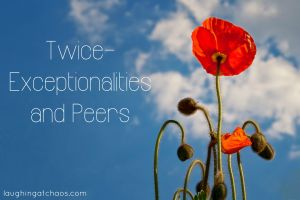 Twice-exceptionalities and peers