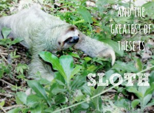 and the greatest of these is sloth