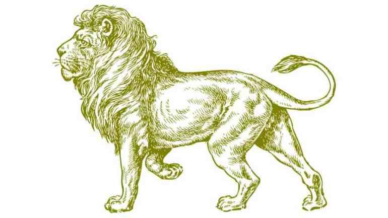 best lion jokes