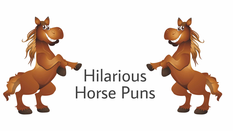 Funniest horse puns