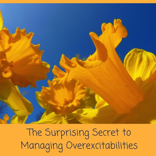 Daffodils - The Surprising Secret to Managing Overexcitabilities - Laugh Love Learn