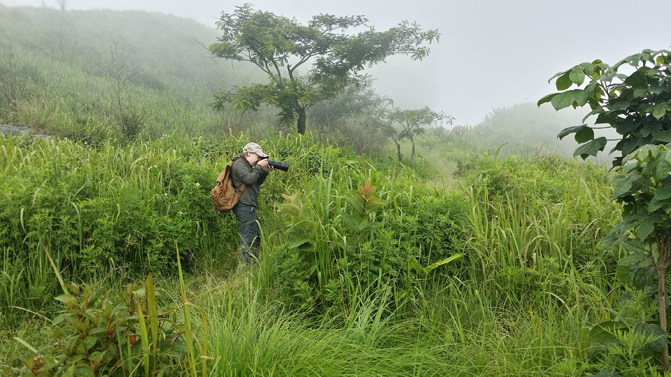 Josiah photographing a butterfly in the lush mountain vegetation as clouds rolled over the summit above.