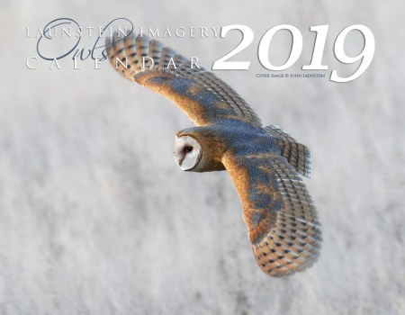 2019 Launstein Imagery Owls Calendar - Front Cover