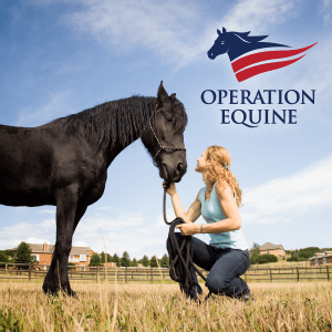 Operation Equine | Logo Identity by Laura Bingham Creative