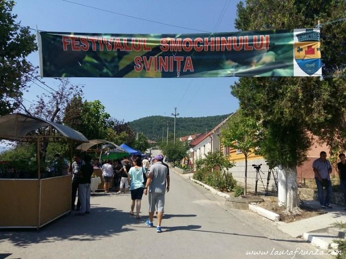 festivalul-smochinului-svinita