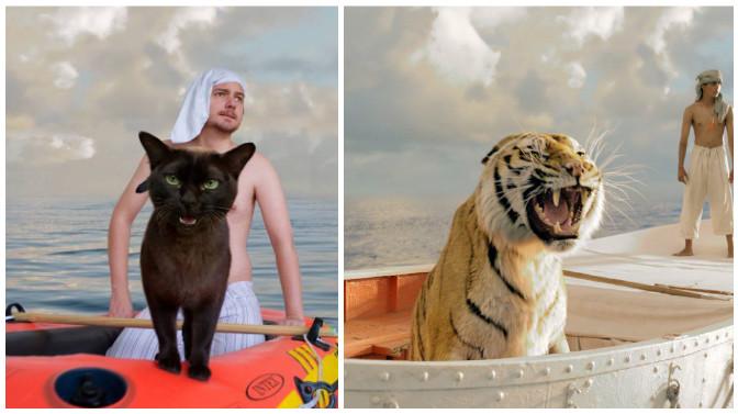 escenas de películas con su gato