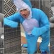 luisito-comunica-tiburon