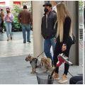 ¡WTF! Mujer pasea un cachorro de tigre en Polanco
