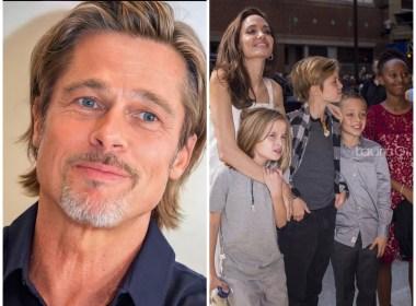 Brad Pitt obtiene custodia