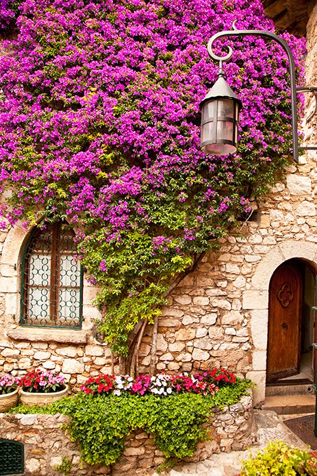 Ivy Cottage, Eze, France