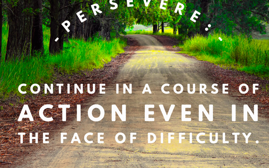 Are You Ready to Persevere this Year?