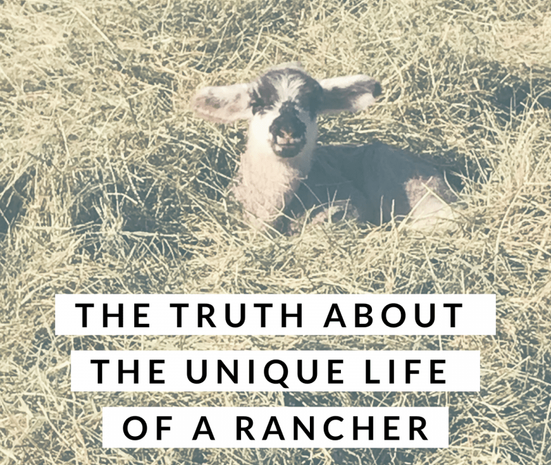 The Truth About the Unique Life of a Rancher