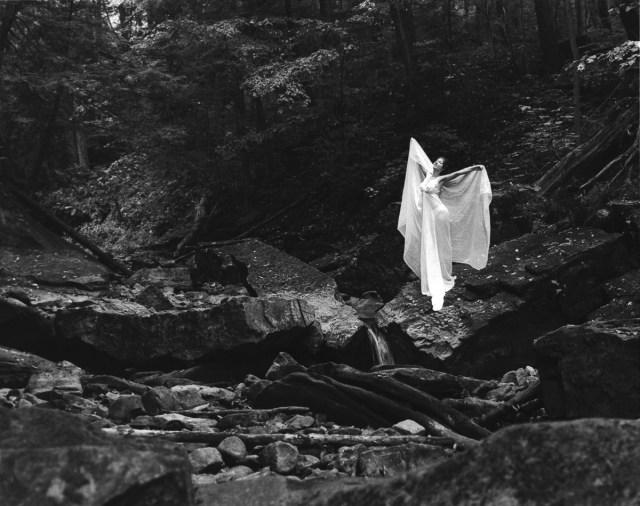 Laüra Hollick Forest Fairy