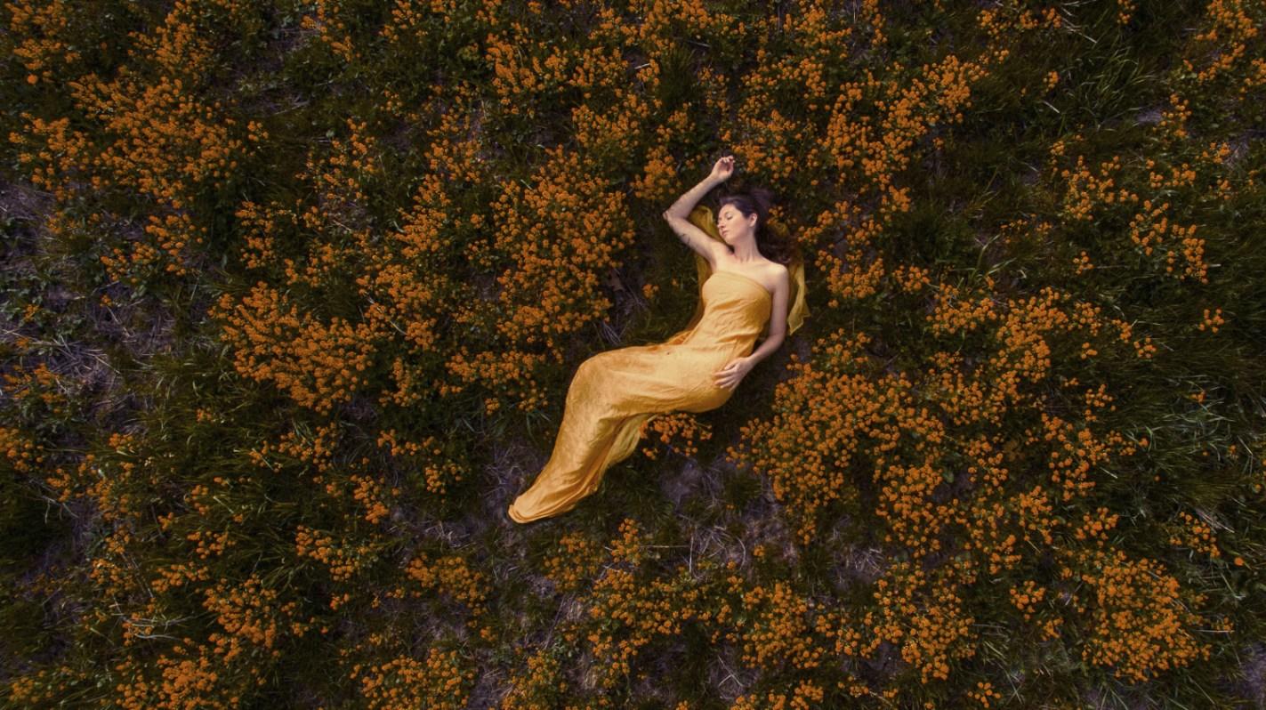 Laüra Hollick dreaming