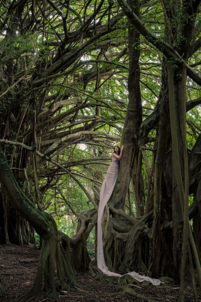 Laüra Hollick Tree Spirit