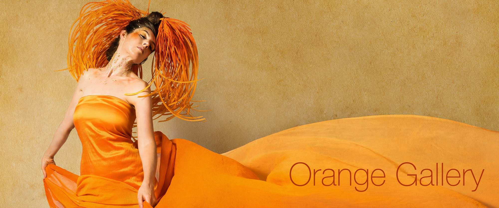 Laüra Hollick's Orange Gallery
