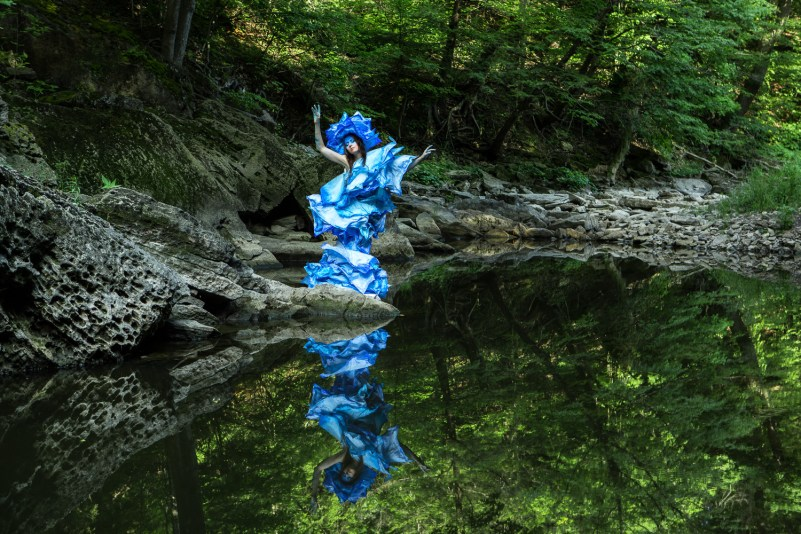 Blue Blossoming Lotus 1