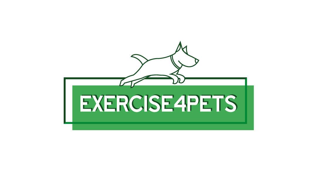 Exercise 4 Pets