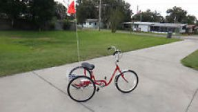 three wheel trike with flag