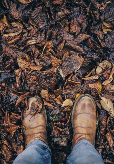 man standing on path with autumn leaves
