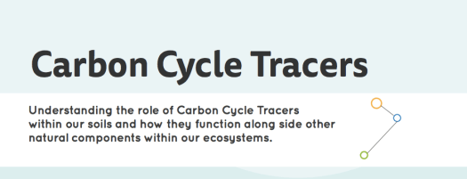 Carbon cycle tracer infographic