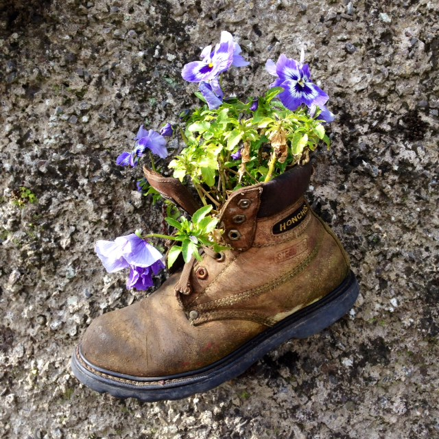 Shoe on wall with flowers