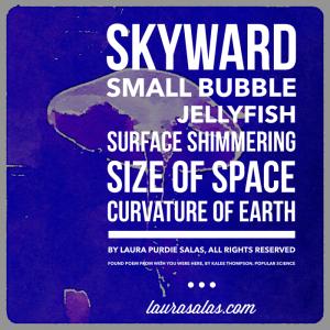 """""""Skyward,"""" a found poem by Laura Purdie Salas"""