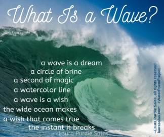 What Is a Wave_