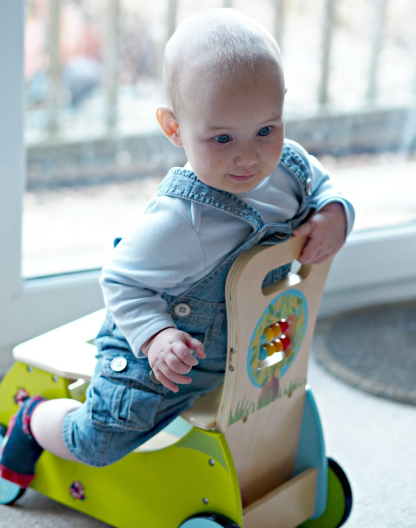 Hippy Chick Classic World Rider and Walker Review - Bo sitting