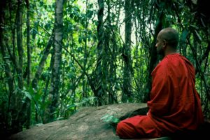 Meditazione degli organi: meditazione del Fegato