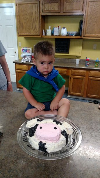 Isaac with his cow cake. Neither of them wanted to take pictures