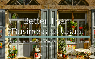 Better Than Business As Usual: How Smaller Businesses Can Fix the World (and Still Turn a Profit)