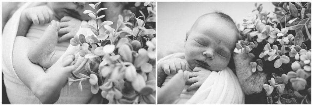 Studio Lifestyle, Newborn Photographer, Seattle Photographer, Seattle Family Photographer, Tacoma Family Photographer, Renton Family Photographer, West Seattle, Des Moines Studio, Baby On The Way, Seattle Births, Tacoma Births, Everett Births, Seattle Photography Studio