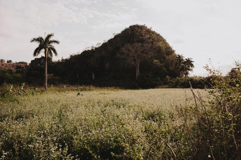 photographe_mariage_cuba-38