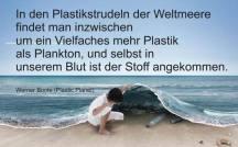 Ein Großteil des Plastikmülls wird im Meer entsorgt und gelangt so auch in die menschliche Nahrungskette. (Quelle: umweltbrief.de)