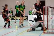 Floorball wurde in den 70er Jahren in Schweden entwickelt.