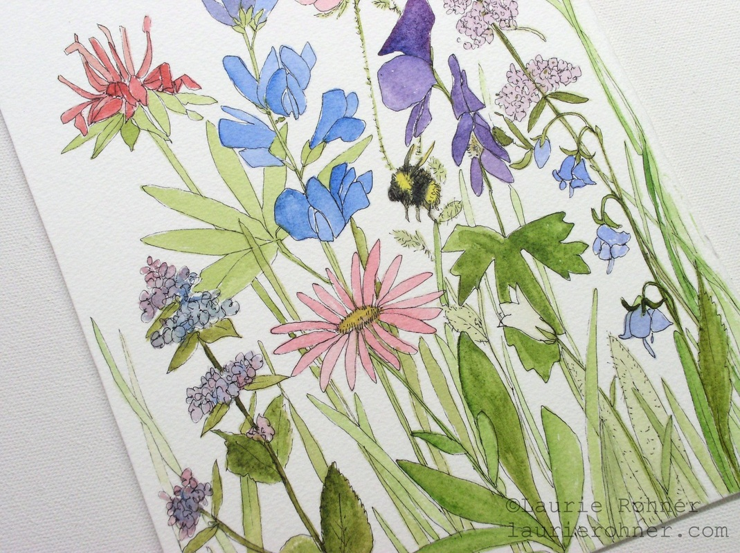 watercolor nature art botanical wild flower