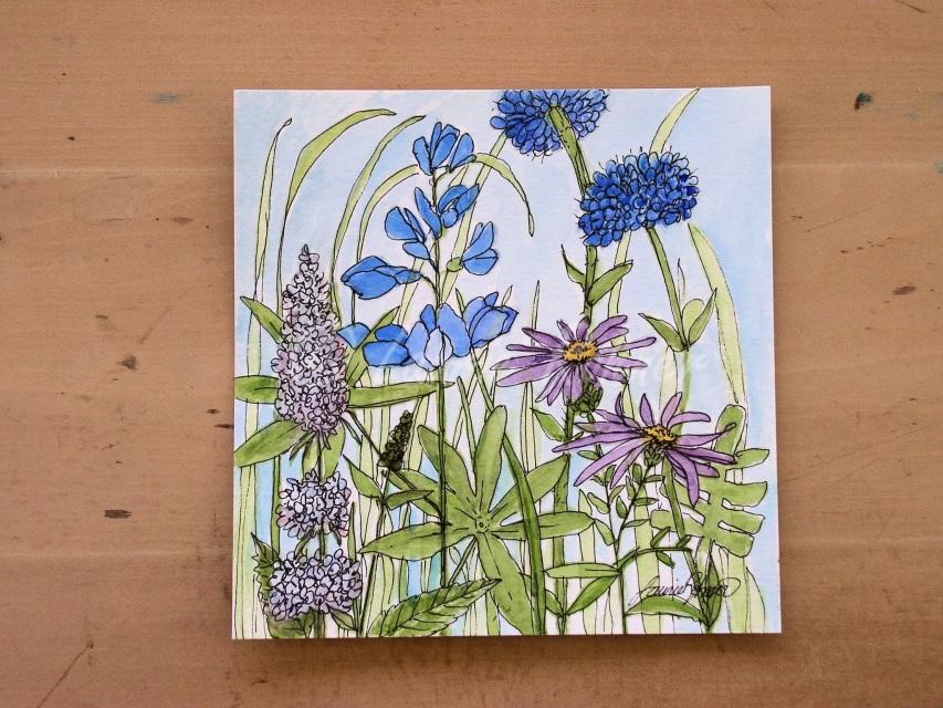 Blue Bachelor Buttons Mint Nature Art Botanical Garden