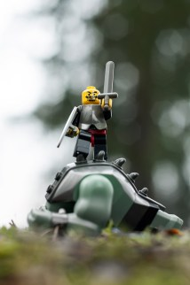 Triumphant Knight