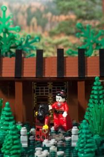 Ninja's Proposal
