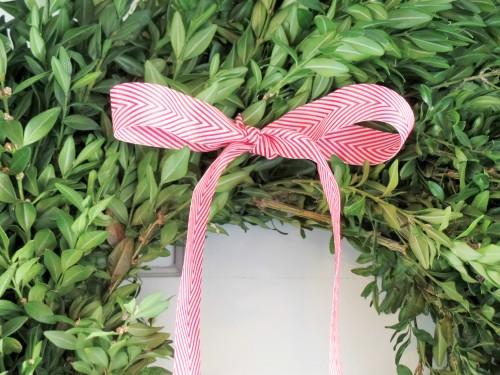 boxwood bow tie