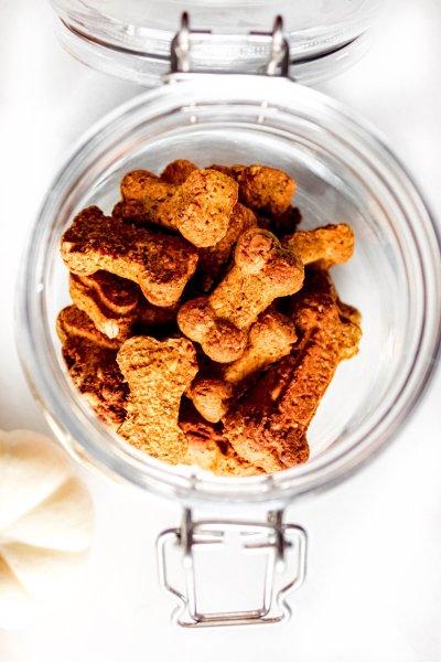 Pumpkin spiced dog treats