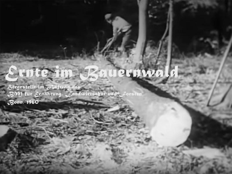 Waldnutzung in den 1960er Jahren
