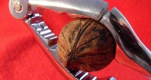 Un casse-noix