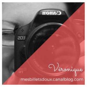 veronique-mesbilletsdoux-combattre-page-blanche-lautrevero.ca