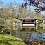 HASSELT – A passeggio per il più grande giardino giapponese d'Europa